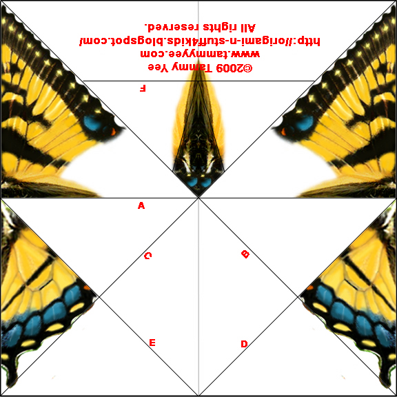 For The Next Few Steps Follow Instructions To Monarch Butterfly Origami 2a With Printed Side Facing Down 2b Fold In Half Diagonally Along B